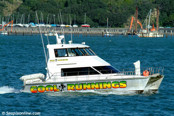 Cool Runnings ID 1351