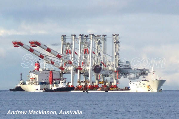 Zhen Hua 19, New Horizon 8026907 ID 4040