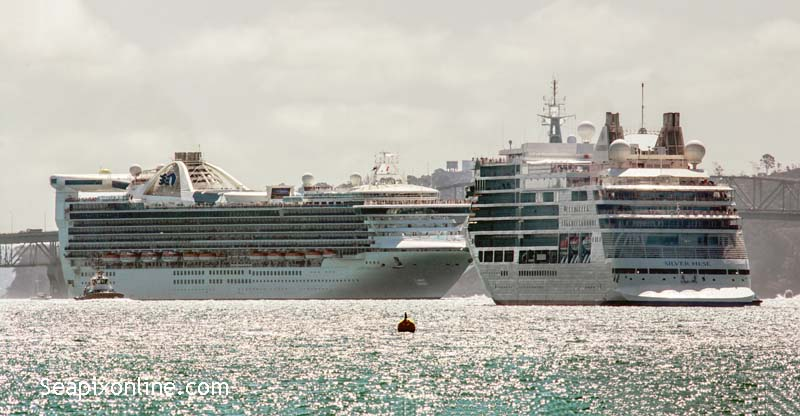 Silver Muse, Golden Princess 9784350, 9192351 ID 11598