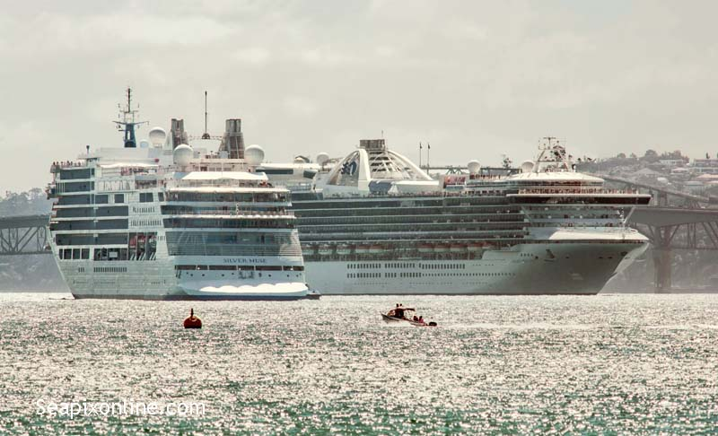 Silver Muse, Golden Princess 9784350, 9192351 ID 11599